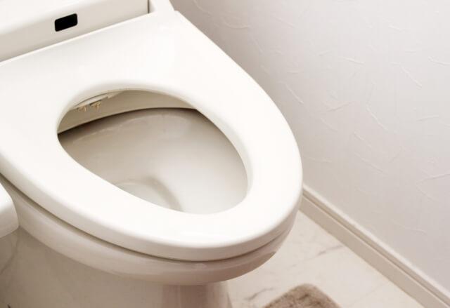 頑固なトイレの尿石汚れを落とす!100均グッズでできるか試してみた!